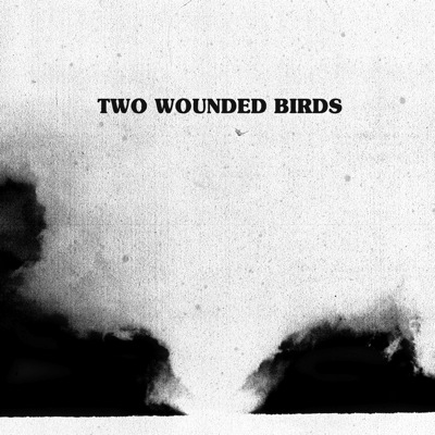 Two Wounded Birds - S/T